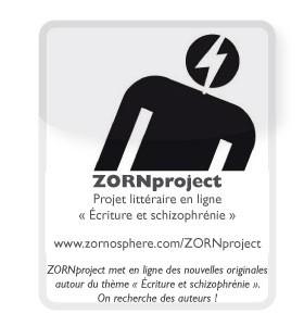 ZORNproject.jpg